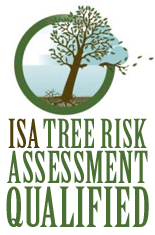 Badge for ISA Tree Risk Assessment Qualification