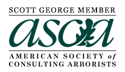 Scott George is a member of the American Society of Consulting Arborists